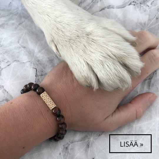 Lemmikkien ystäville