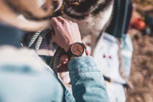 Apis Watch